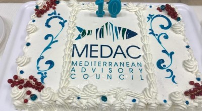 MEDAC meetings 3-4 June 2020